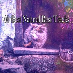 40 Best Natural Rest Tracks
