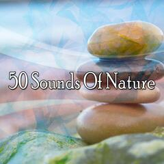 50 Sounds Of Nature