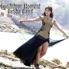 Sebna Baad