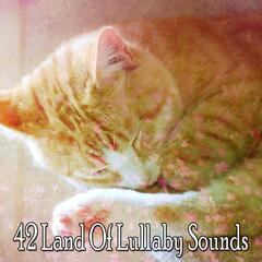 42 Land Of Lullaby Sounds