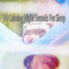34 Calming Night Sounds For Sleep
