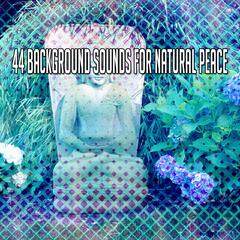 44 Background Sounds For Natural Peace
