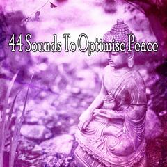 44 Sounds To Optimise Peace