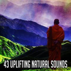 43 Uplifting Natural Sounds