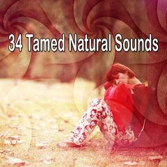 34 Tamed Natural Sounds