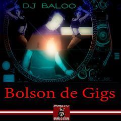 Bolson de Gigs