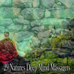 29 Natures Deep Mind Massagers