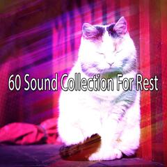 60 Sound Collection For Rest
