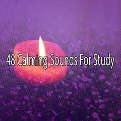 48 Calming Sounds For Study