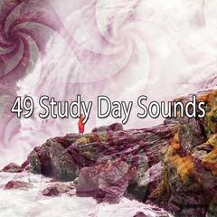 49 Study Day Sounds