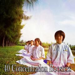 40 Concentration Boosters