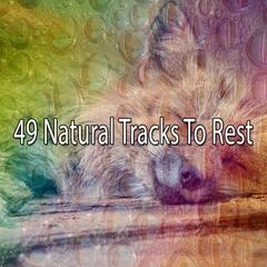 49 Natural Tracks To Rest