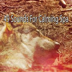 49 Sounds For Calming Spa