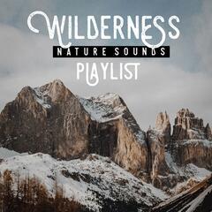 Wilderness nature sound playlist