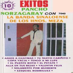 10 Exitos con La Banda Sinaloense De Los Hermanos Meza