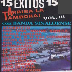 15 Exitos Con Banda Sinaloense Vol. 3