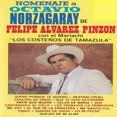 Homenaje A Octavio Norzagaray De Felipe Alvarez Pinzon