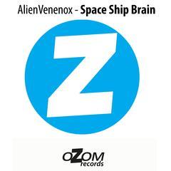 Space Ship Brain