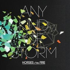 Any Kind of Storm
