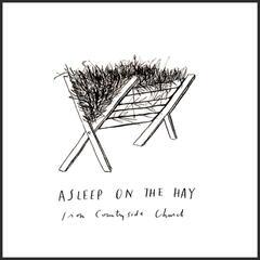 Asleep on the Hay