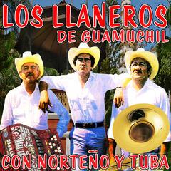 Los Llaneros De Guamuchill Con Norteño y Tuba
