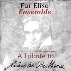 A Tribute To Ludwig van Beethoven