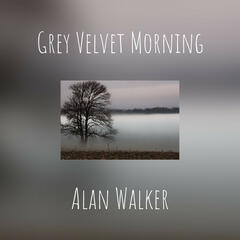 Grey Velvet Morning
