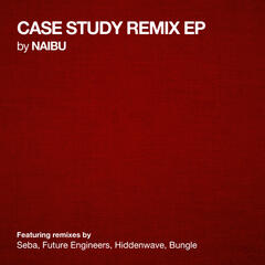 Case Study Remix EP