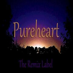 Pureheart (Paduraru Inspiring House Music Mix)