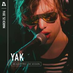 Yak on Audiotree Live