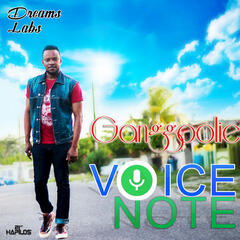 Voicenote - Single