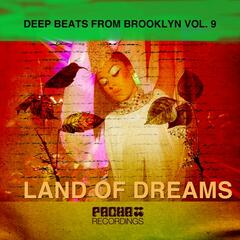 Deep Beats from Brooklyn, Vol.9