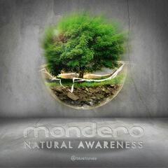Natural Awareness