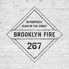 Flava of the Street
