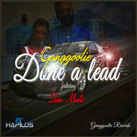 Done A Lead - Single