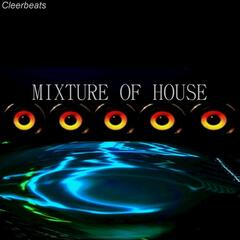Mixture of House
