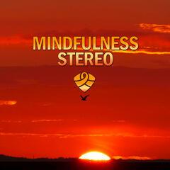 Mindfulness Stereo, Vol. 9