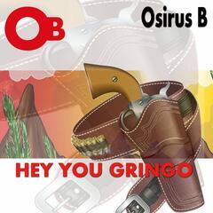 Hey You Gringo