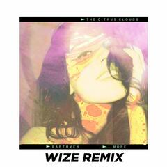 More (WIZE Remix)