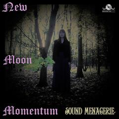 New Moon Momentum