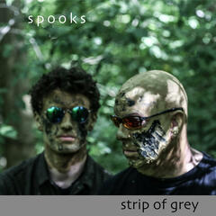 Strip of Grey