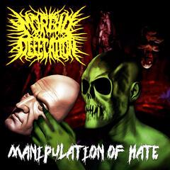 Manipulation of Hate
