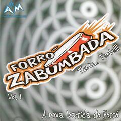 A Nova Batida do Forró, Vol. 1