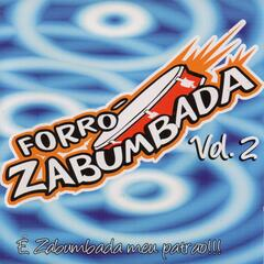 É Zabumbada Meu Patrão, Vol. 2