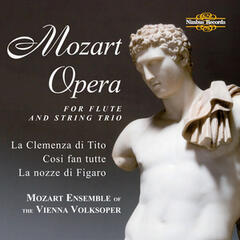 Mozart: Opera for Flute and String Trio