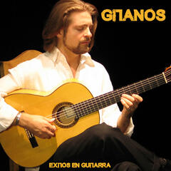 Éxitos en Guitarra (Instrumental)