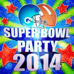 Super Bowl Party 2014