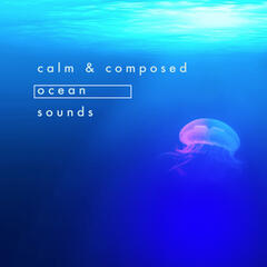 Calm & Composed Ocean Sounds