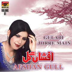 Gulabi Jorre Main, Vol. 1 - Single