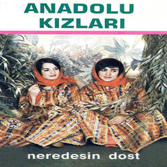 Neredesin Dost